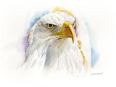 Painting - The Patriot by John Norman Stewart