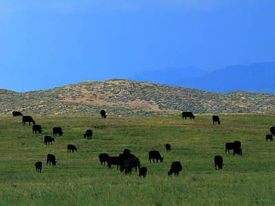 The Peaceful Pasture  Art Print by Lin Haring