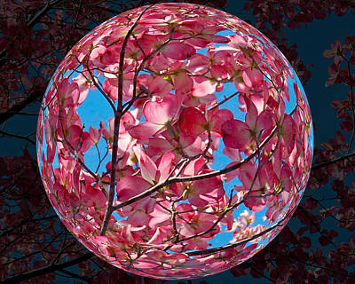 Art Print featuring the photograph The Peach Tree Sphere by William Havle
