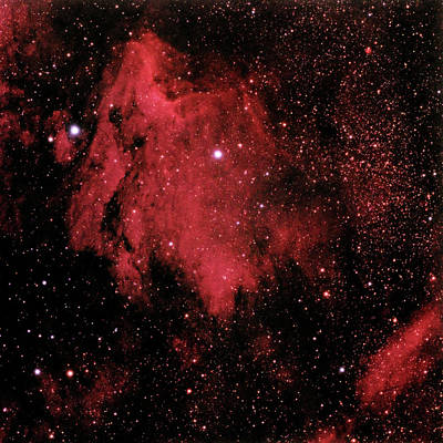 Photograph - The Pelican Nebula In Cygnus by A. V. Ley