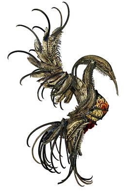 Devils Claw Sculpture - The Phoenix by Cara Bevan
