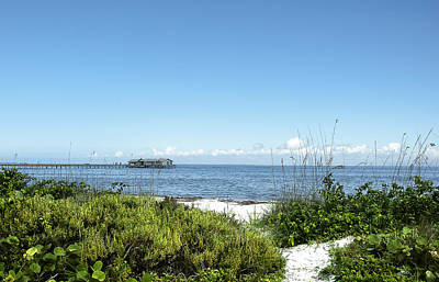 Seascape Photograph - The Pier At Anna Maria by Norman Johnson