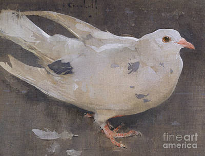 Pigeon Painting - The Pigeon by Joseph Crawhall