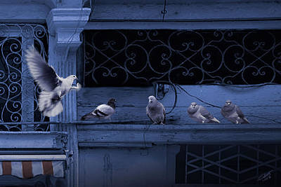 Pigeon Digital Art - The Pigeons Of Cafe Havana  by IM Spadecaller