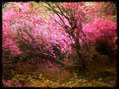 Photograph - The Pink Forest by Absinthe Art By Michelle LeAnn Scott