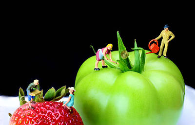 Painting - The Planting Tomato And Strawberry Little People On Food by Paul Ge