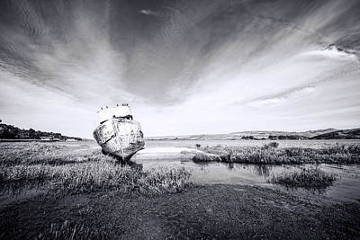 Photograph - The Point Reyes Rest by Priya Ghose
