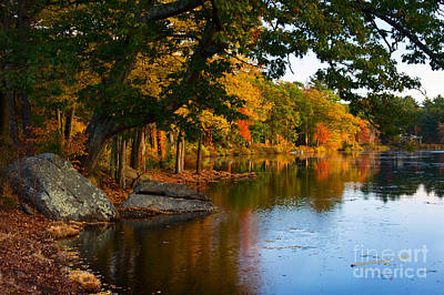 The Pond At Fisk Mill Print by Jim  Calarese