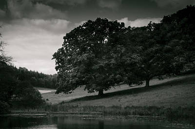 Photograph - The Pond by Stewart Scott