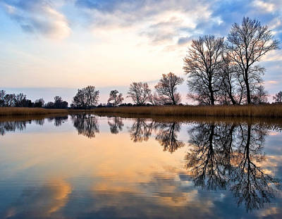 Photograph - Ponds In Lomna by Tomasz Dziubinski