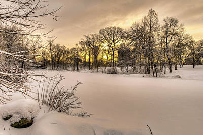 The Pool Frozen Over At Sunrise Art Print