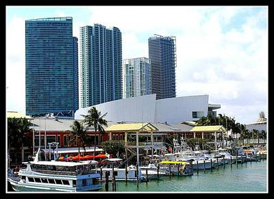 The Port Of Miami At Bayside Original by Dora Sofia Caputo Photographic Art and Design