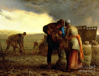 Harvesting Painting - The Potato Harvest by Jean Francois Millet
