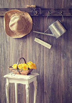 Hanging Basket Photograph - The Potting Shed by Amanda Elwell