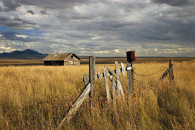 Photograph - The Prairies by Inge Riis McDonald