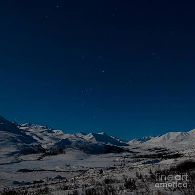 Snowy Night Photograph - The Presence Of Absolute Silence by Priska Wettstein