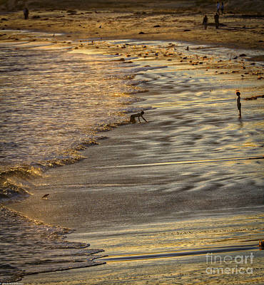 Walking In Tide Photograph - The Prince Of The Tides by Mitch Shindelbower