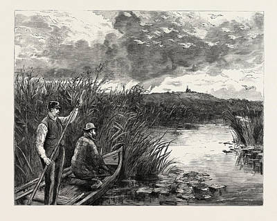 Swans Drawing - The Prince Of Wales Shooting Wild Swans At Ekolsund by Swedish School