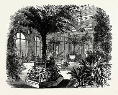 Conservatory Drawing - The Private Conservatory, Trentham, Uk, England by Litz Collection