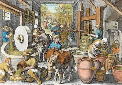 Olive Drawing - The Production Of Olive Oil, Plate 13 by Jan van der Straet