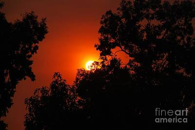Photograph - The Promise Of A Better Day by Claudia Ellis