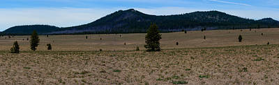 Photograph - The Pumice Desert Panorama by Tikvah's Hope