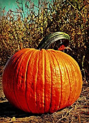 Photograph - The Pumpkin by Chris Berry