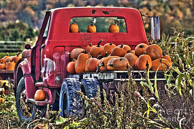 The Pumpkin Hauler Art Print by Sonya Lang