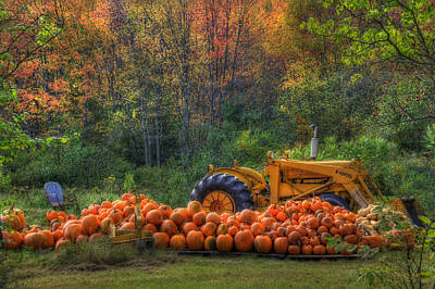Autumn Scene Photograph - The Pumpkin Patch by Joann Vitali