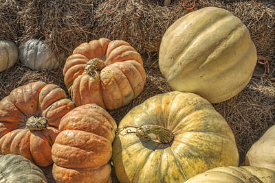 Photograph - The Pumpkins Of Autumn by Jason Politte