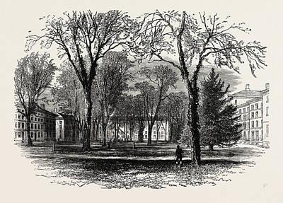 Harvard Drawing - The Quadrangle, Harvard College, Cambridge by American School