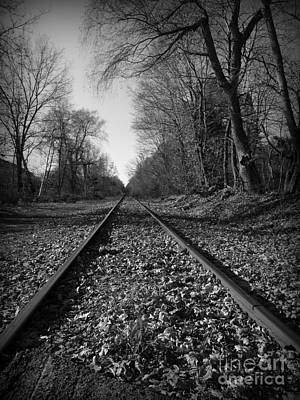 Photograph - The Rails by Barbara Bardzik