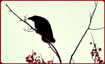 Photograph - The Raven by Annie Pflueger