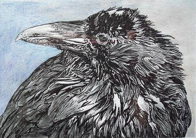 The Raven Drawing - The Raven by Holly Gibert
