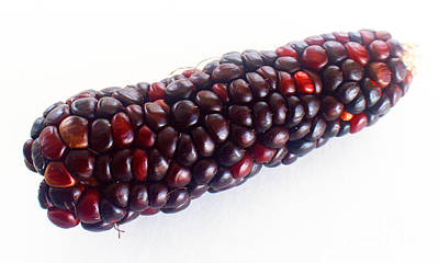 Kim Fearheiley Photography Royalty Free Images - The Real Red Corn Royalty-Free Image by Tina M Wenger