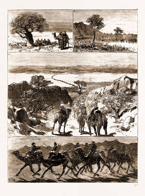 The Rebellion In Sudan, 1883 1. On The Road To Berber Art Print by Litz Collection
