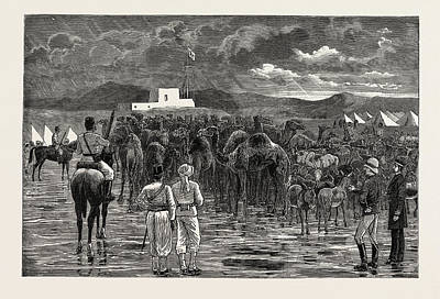 Cattle Drive Drawing - The Rebellion In The Soudan - Camels And Cattle Captured by English School