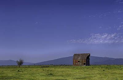 Photograph - The Red Barn by Gary Neiss