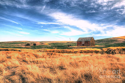 Photograph - The Red Barn by Sarah Schroder