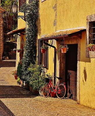 Photograph - The Red Bicycle by Dany Lison