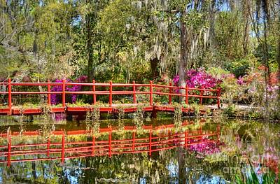 Photograph - The Red Bridge At Magnolia Plantation by Kathy Baccari