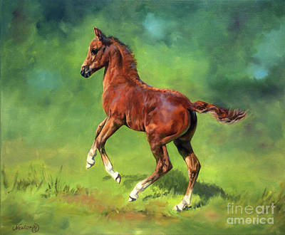 Morgan Horse Painting - The Red Colt by Jeanne Newton Schoborg