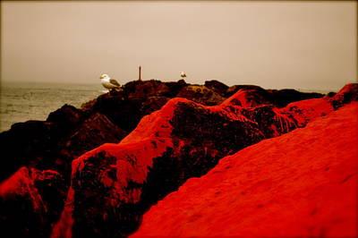 The Red Dawn Art Print by Sheldon Blackwell