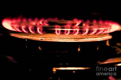Photograph - The Red Flame by Aqil Jannaty