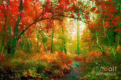 The Red Forest Art Print by Tara Turner