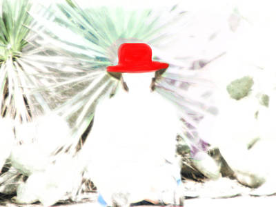 Photograph - The Red Hat by Marie Jamieson