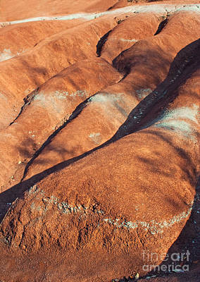 Photograph - The Red Planet by Barbara McMahon