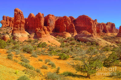 Photograph - The Red Rocks by Tara Turner
