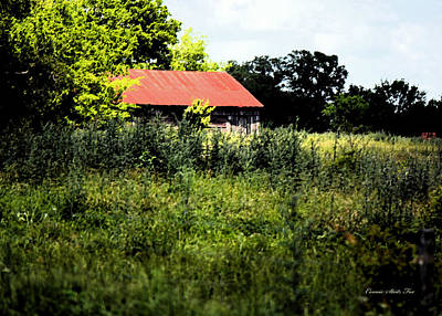Photograph - The Red Roof by Connie Fox