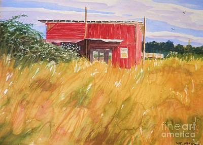 Photograph - The Red Shed by Suzanne McKay